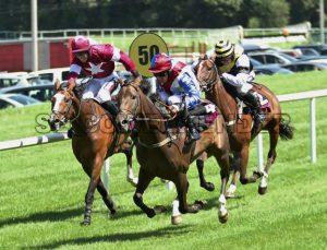 20 new Races 16.JPG - Sligo Weekender   Sligo News   Sligo Sport
